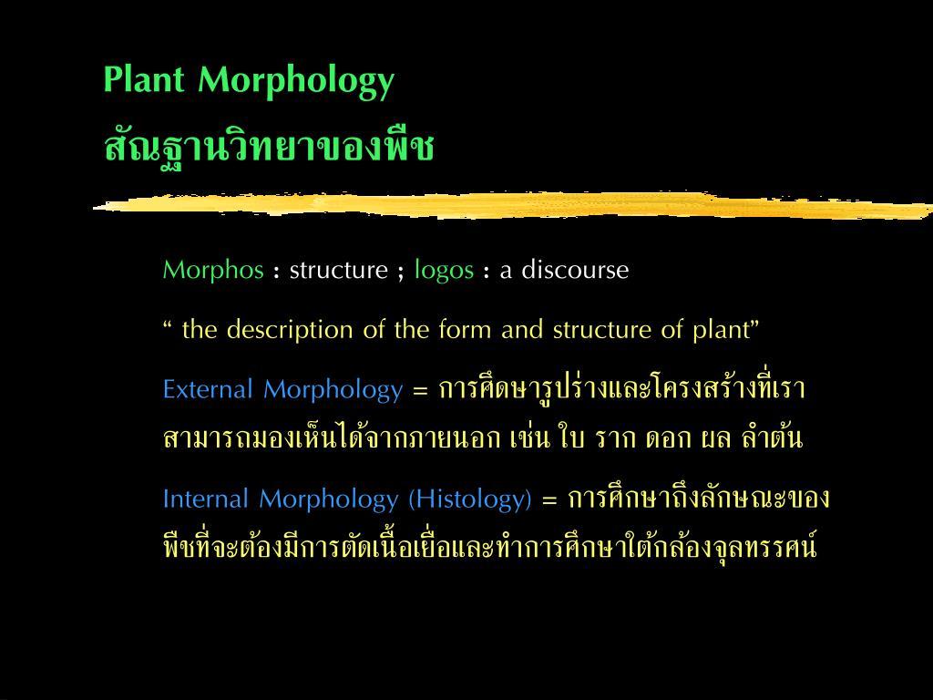 plant morphology l.