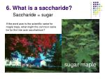 6 what is a saccharide