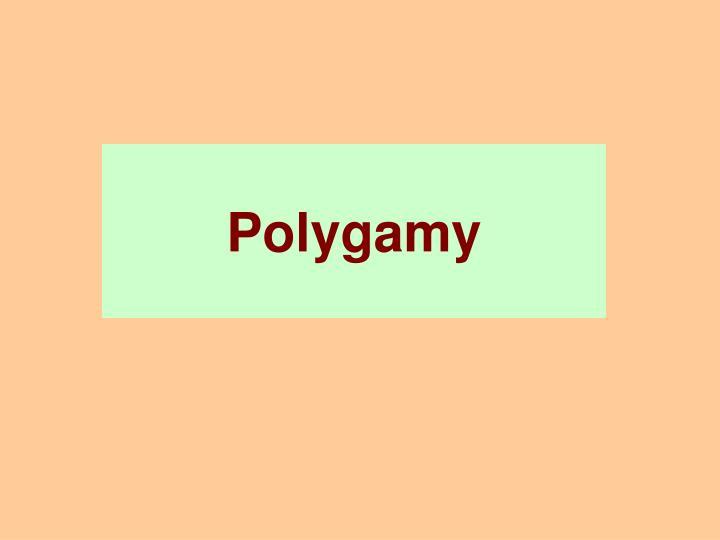 polygamy n.