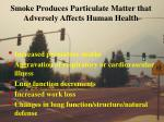 smoke produces particulate matter that adversely affects human health
