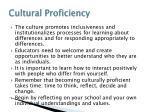 cultural proficiency4
