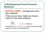 a multilayered feed forward network24