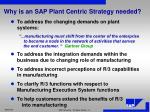 why is an sap plant centric strategy needed