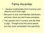 family ascaridae