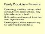 family oxyuridae pinworms40