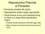reproductive potential of parasites