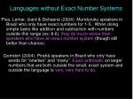 languages without exact number systems