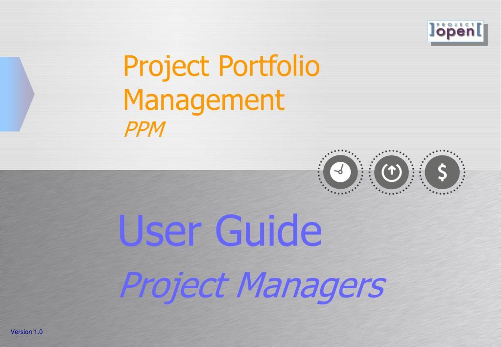 project portfolio management ppm l.