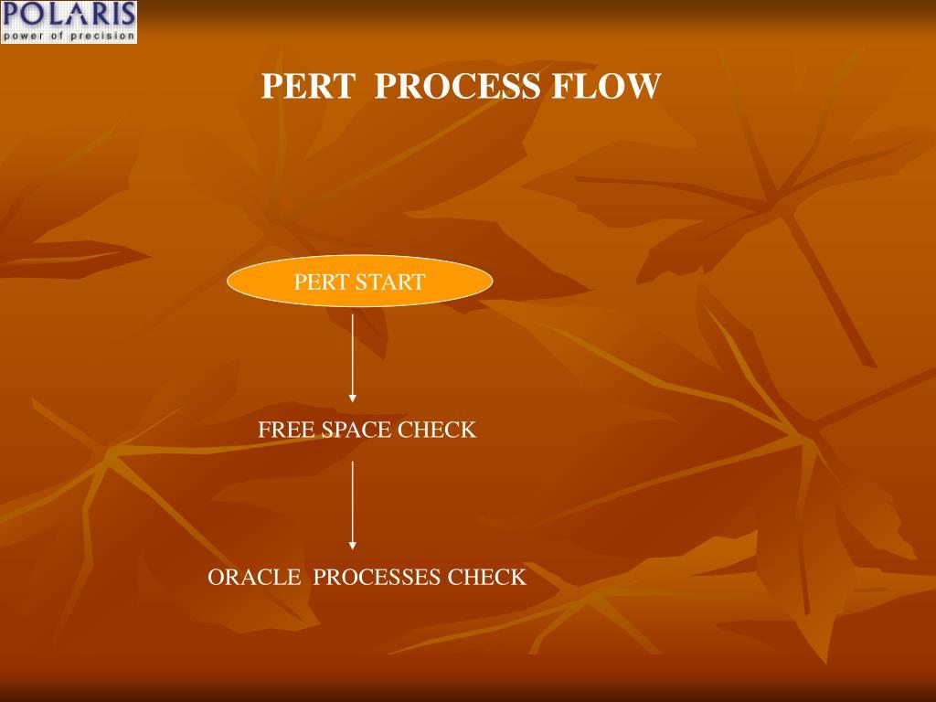 PERT  PROCESS FLOW