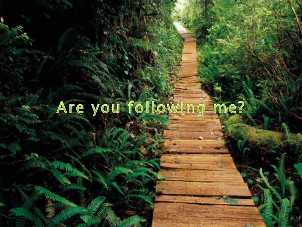 Are you following me?