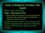limits of religious freedom the amish