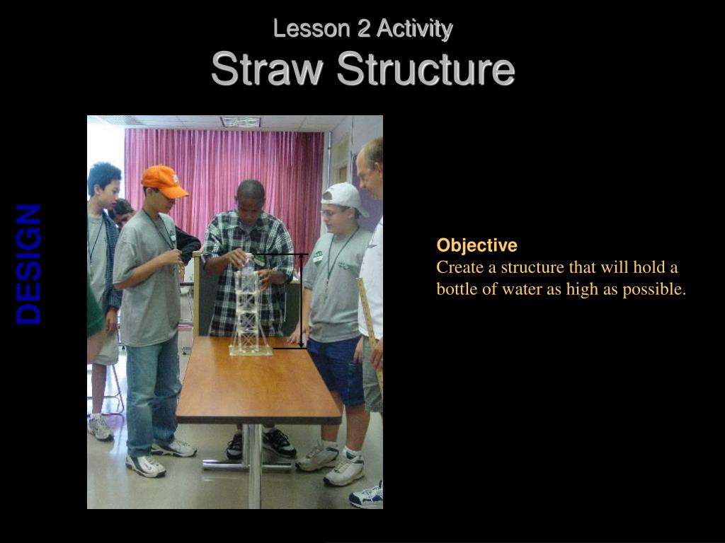 Lesson 2 Activity