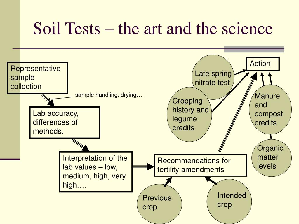 Soil Tests – the art and the science