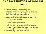 characteristics of phylum cont