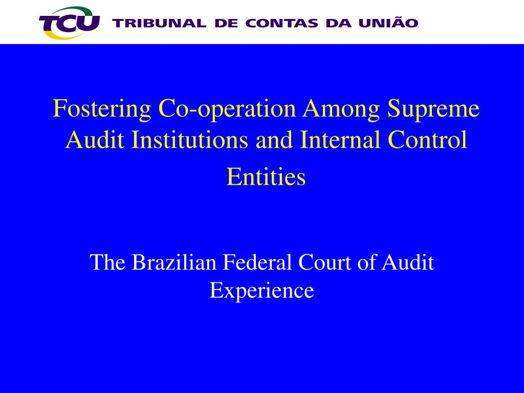 fostering co operation among supreme audit institutions and internal control entities l.