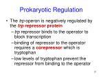 prokaryotic regulation21