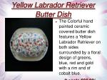yellow labrador retriever butter dish