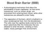 blood brain barrier bbb