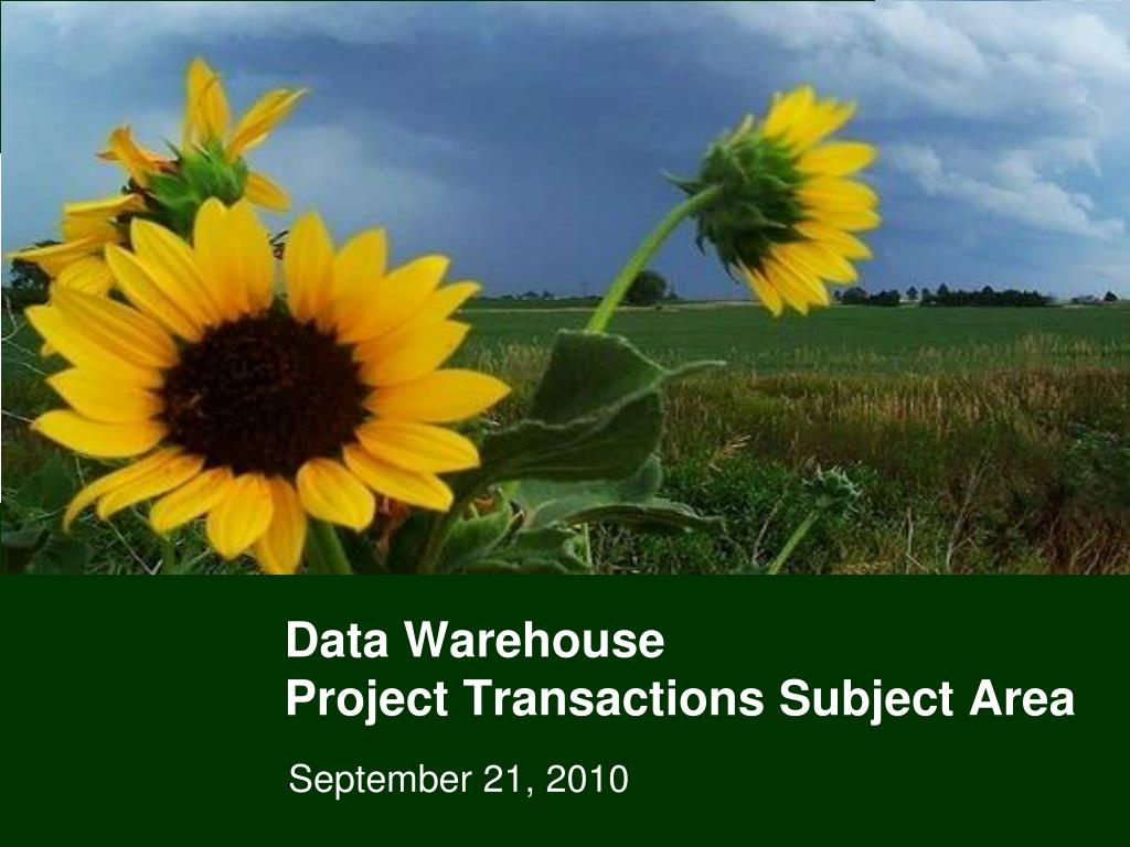 data warehouse project transactions subject area l.