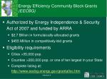 energy efficiency community block grants eecbg
