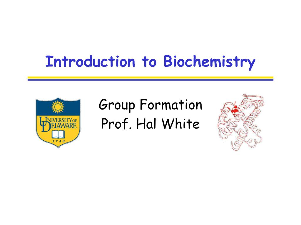 introduction to biochemistry l.