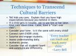 techniques to transcend cultural barriers