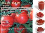 tomato products overview