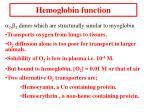hemoglobin function