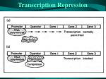 transcription repression