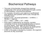 biochemical pathways9