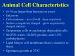 animal cell characteristics