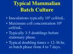 typical mammalian batch culture