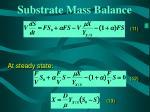 substrate mass balance
