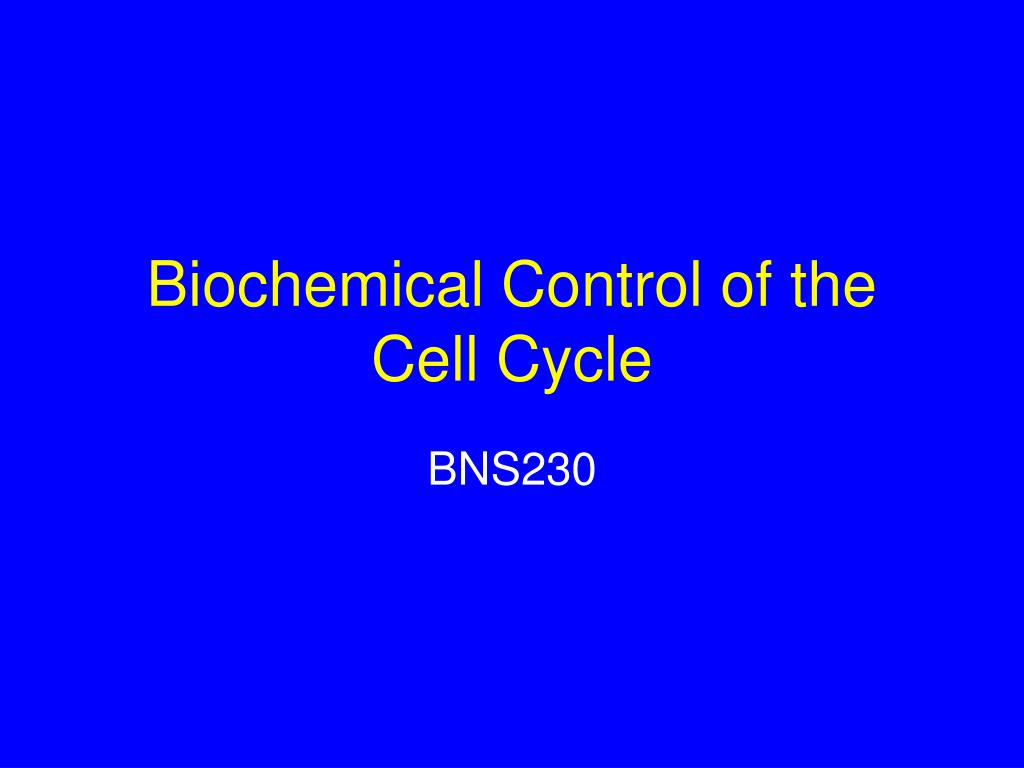biochemical control of the cell cycle l.