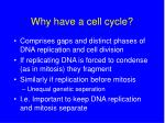 why have a cell cycle