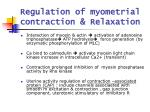 regulation of myometrial contraction relaxation4