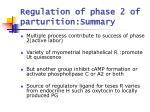 regulation of phase 2 of parturition summary
