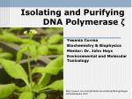 isolating and purifying dna polymerase