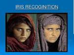 iris recoginition