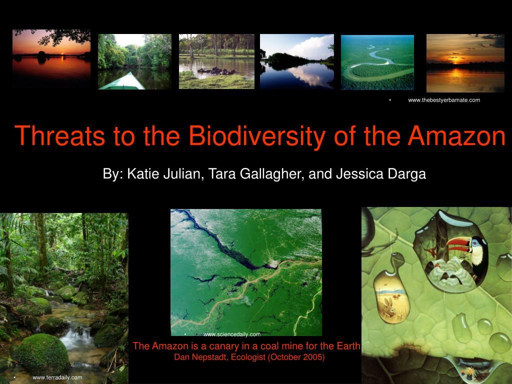 threats to the biodiversity of the amazon l.