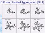 diffusion limited aggregation dla20