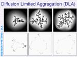 diffusion limited aggregation dla21