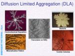 diffusion limited aggregation dla23
