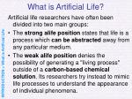 what is artificial life5