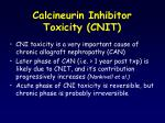calcineurin inhibitor toxicity cnit