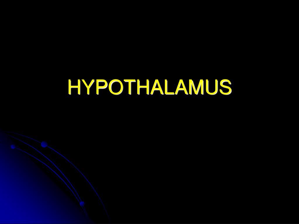 hypothalamus l.