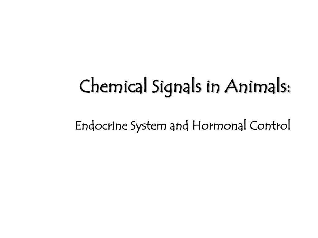 chemical signals in animals endocrine system and hormonal control l.