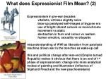 what does expressionist film mean 2