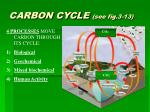 carbon cycle see fig 3 13