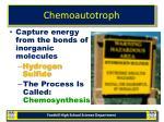 chemoautotroph
